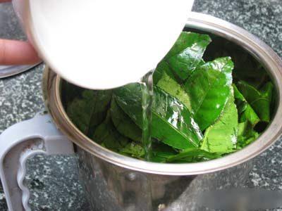 Chữa mụn bọc bằng trà xanh cực hiệu quả